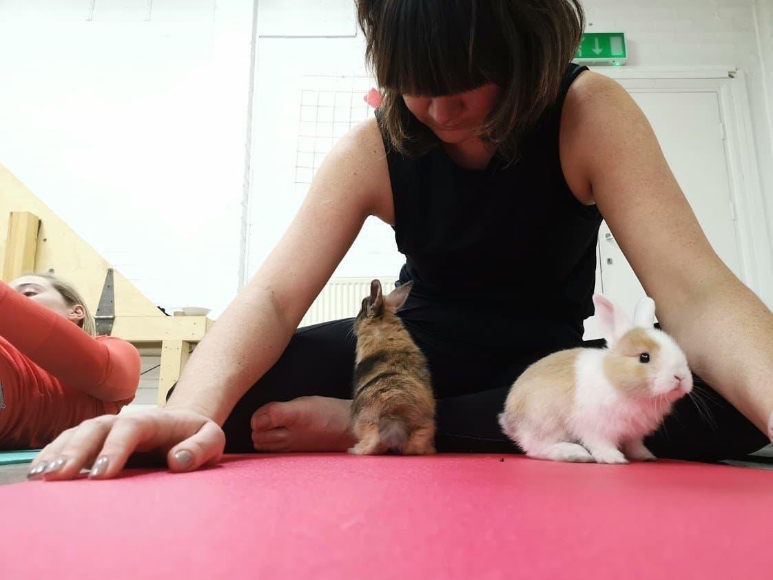 Baby Rabbit Yoga