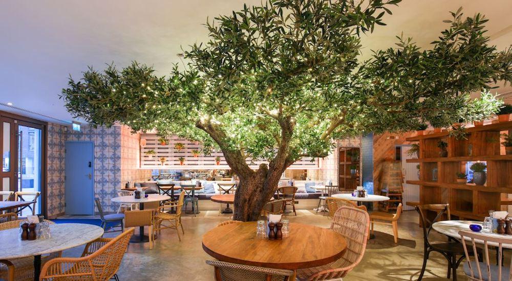 Dine Under An Olive Tree At This Gorgeous Mediterranean Restaurant
