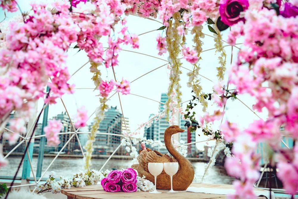 Neverland - Cherry Blossom-18