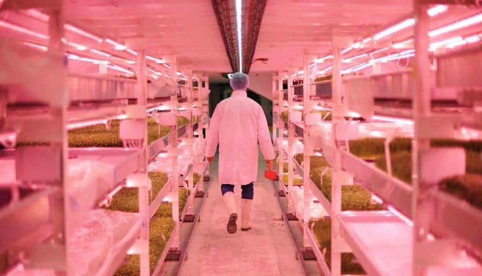 The World's First Underground Farm Is Open For Tours • Growing Underground