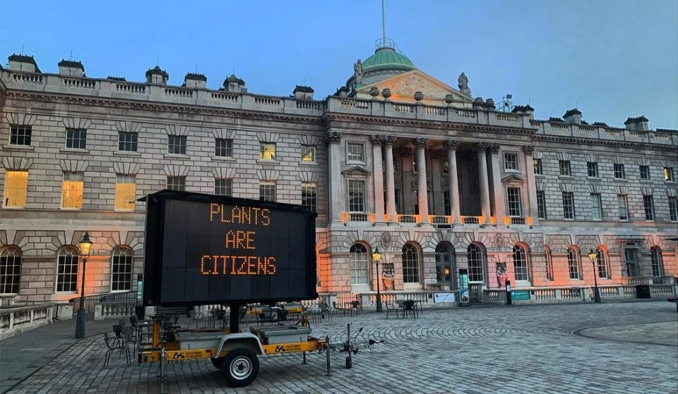 This Powerful Climate-Focused Art Installation Is Now At Somerset House