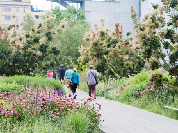 You Could Win £5000 For Designing A New London Park