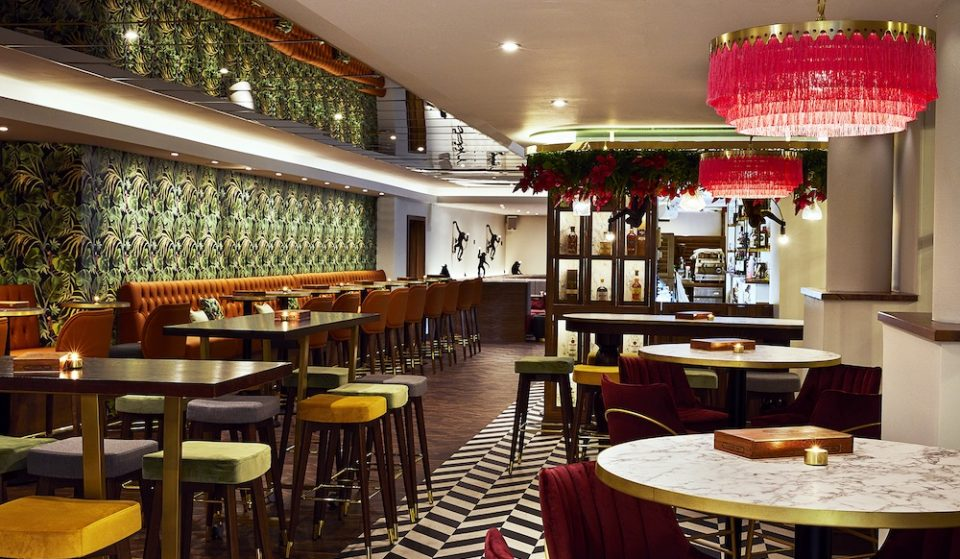 London's Tropical Subterranean Cocktail Bar Is A Rum-Filled Delight • The Leaf And Cane
