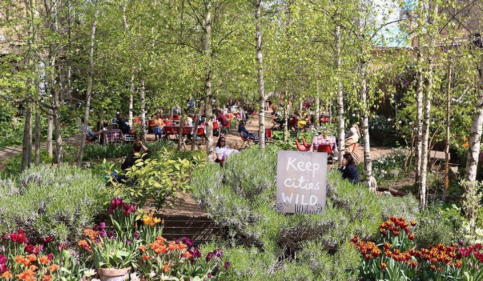 This Old Railway Line Is Now A Gorgeous Community Garden • Dalston Eastern Curve Garden