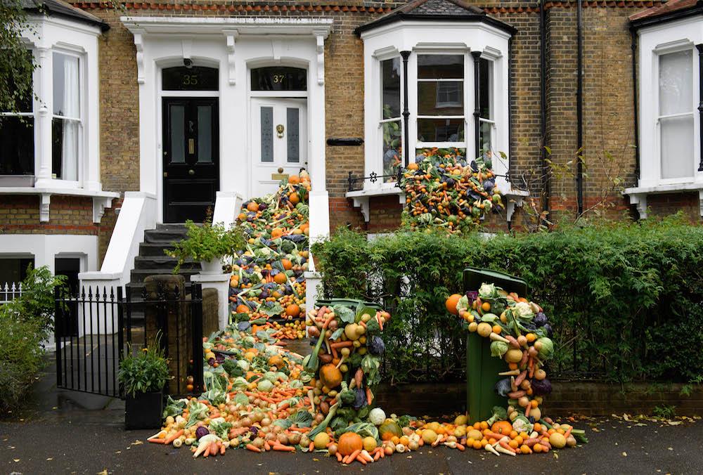 food-wastage-house