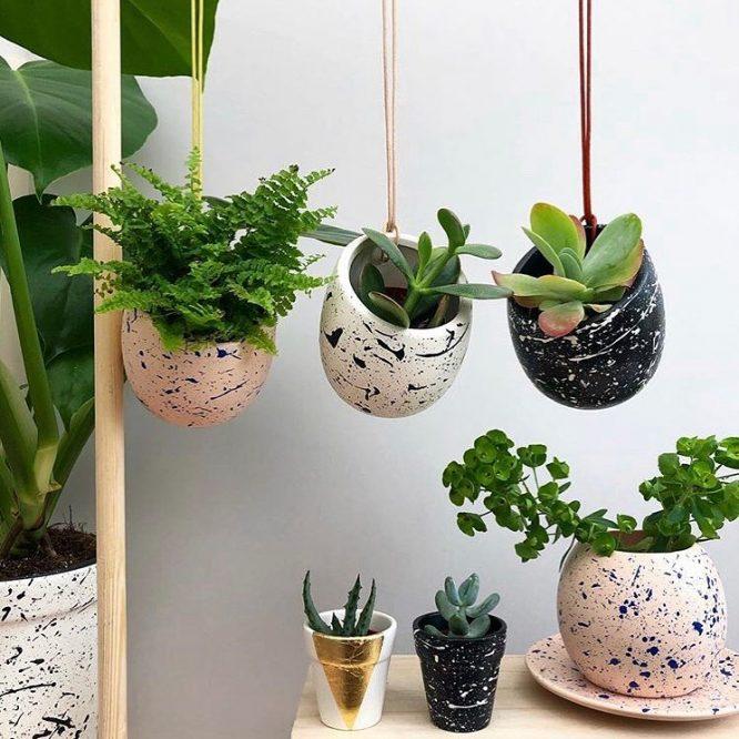 house-plants-london