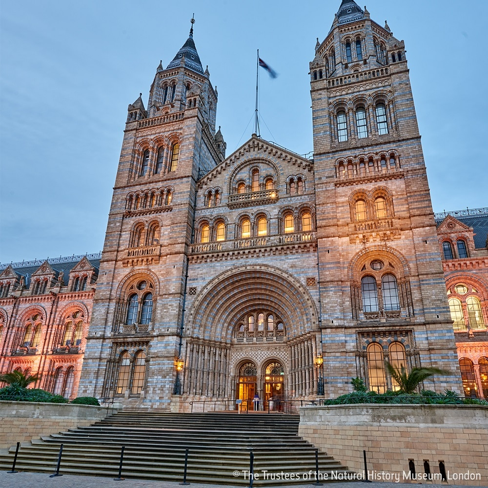 Natural History Museum events