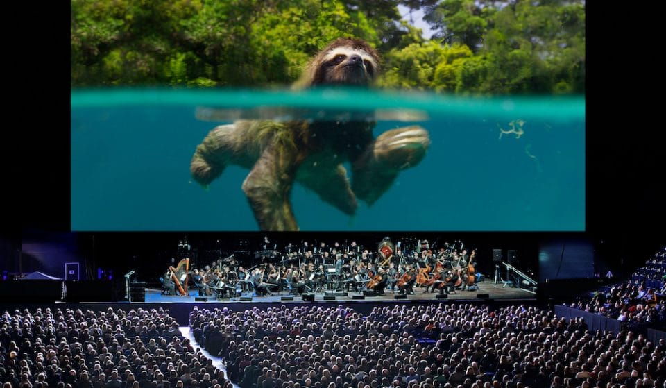 Planet Earth II Live In Concert Is Coming To London's O2 Arena