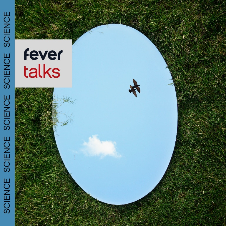 Fever Talks