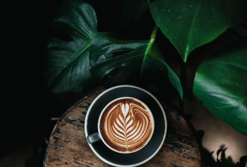 Tate Are Hiring A 'Head Of Coffee' And I Finally Know What I Want To Be When I Grow Up
