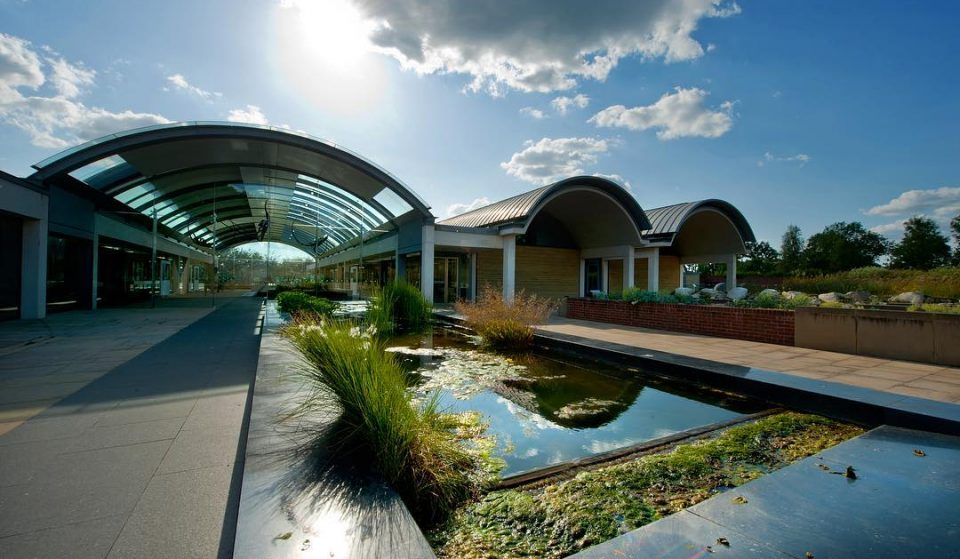 Kew Gardens' Seed Banks Could Help Rehabilitate Areas Devastated By The Australian Bushfires