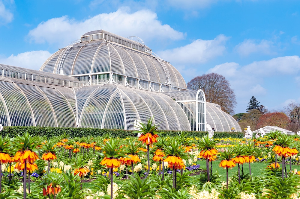 Kew Gardens Is Still Open To The Public During The November Lockdown
