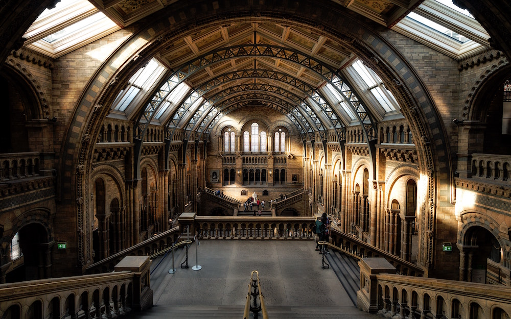 The Natural History Museum Has Closed Until Further Notice