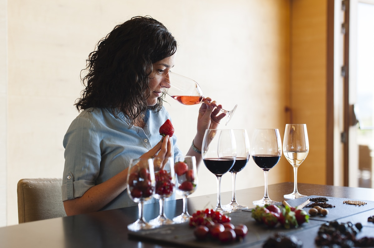 campo viejo online wine tasting and cooking class