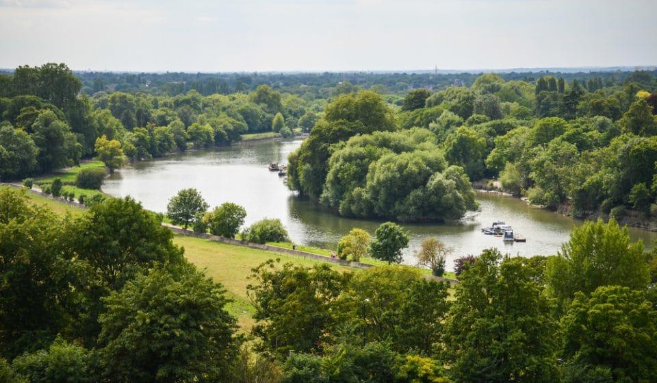 A New Study Has Revealed London's Greenest Borough