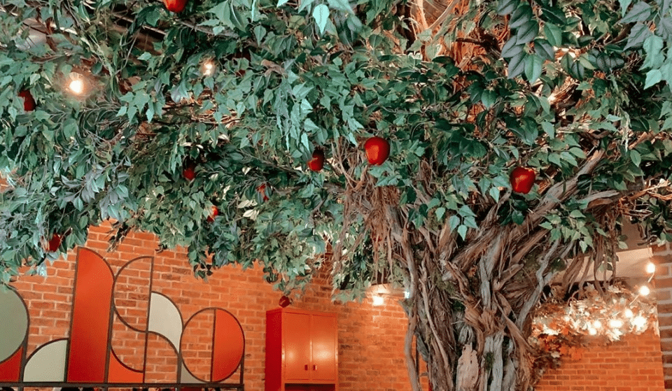 Dine Beneath An Apple Tree Inside This Gorgeous Seven Dials Café • Apple Butter
