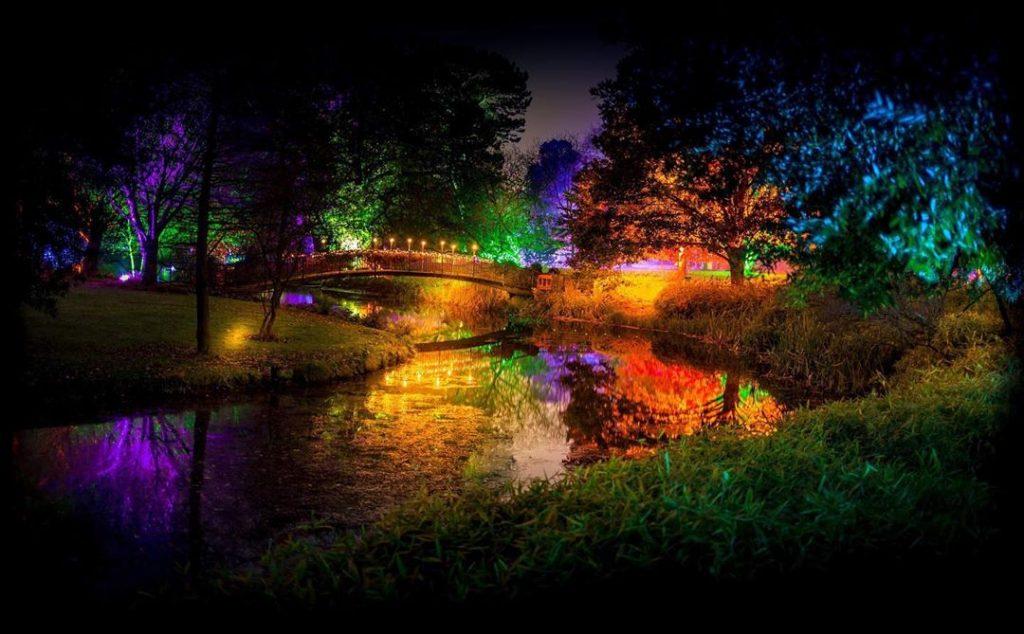 Enchanted Woodland cancelled