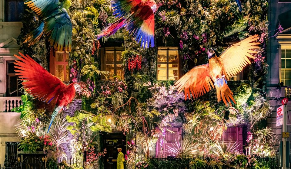 Mayfair Club Annabel's Breathtaking Rainforest Facade Is Back To Save The Amazon