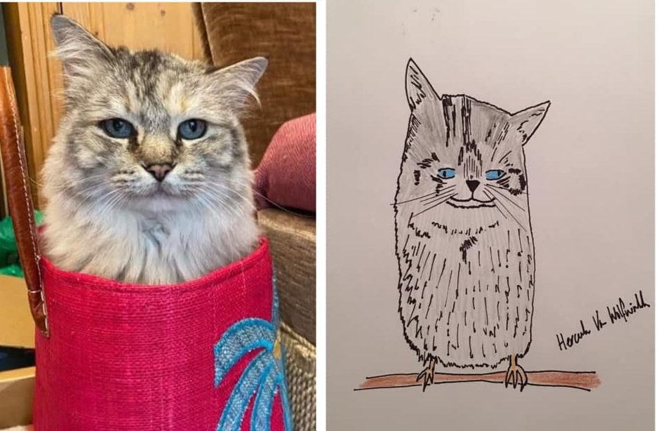 These Unconventionally Adorable Pet Portraits Have Raised Over £10,000 For Charity