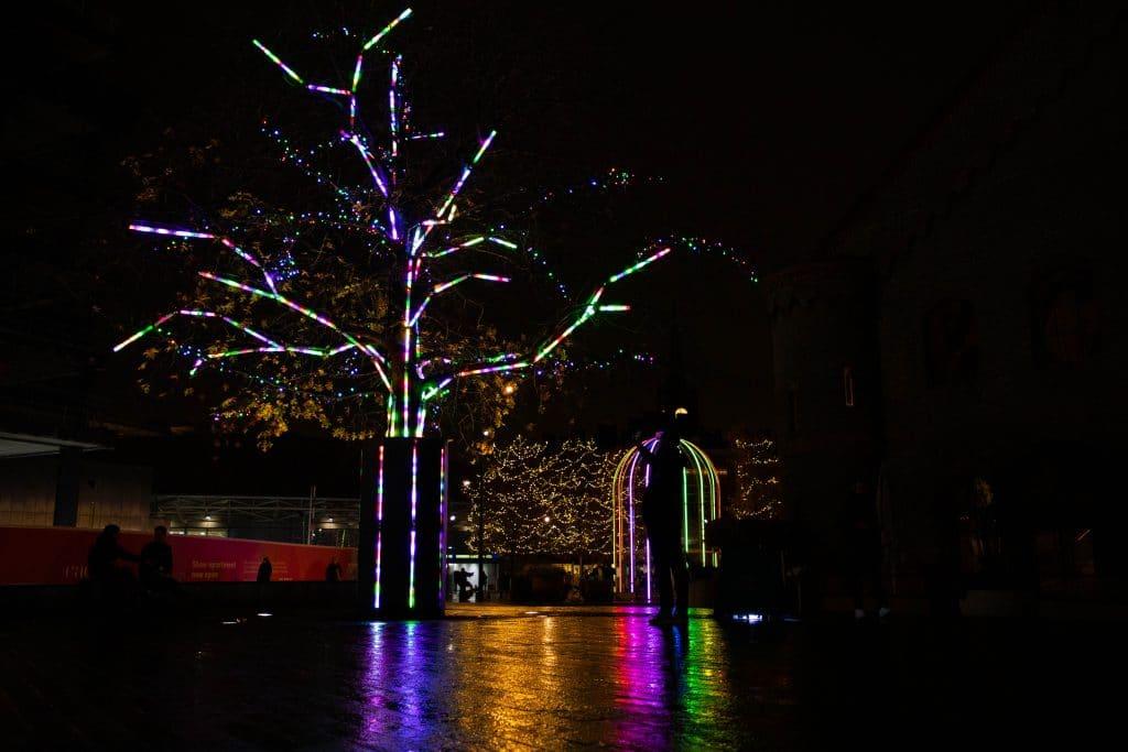 Terrarium tree