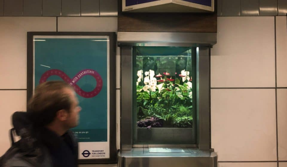 These Tube Stations Are Home To Tiny Terrariums That'll Brighten Up Your Commute