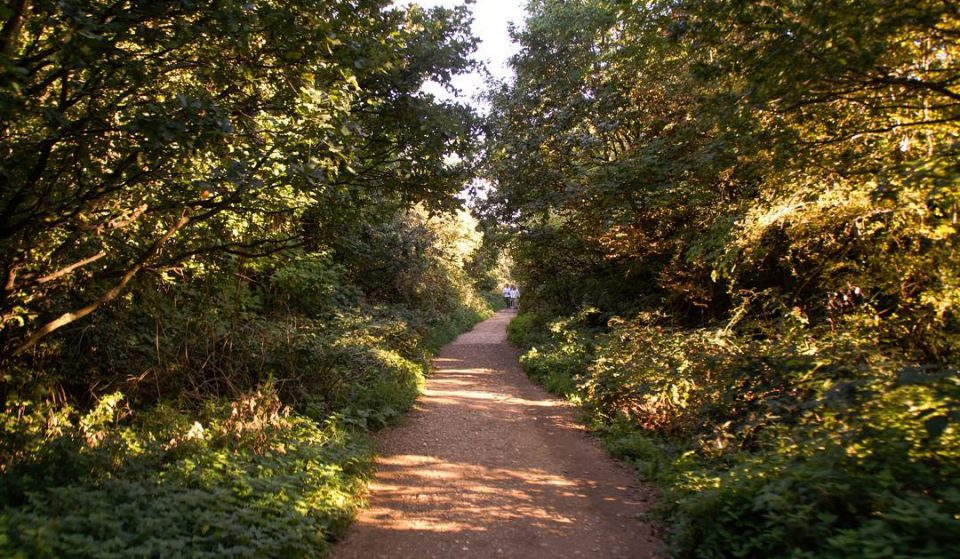 This Tranquil Walk Follows The Route Of An Old Railway Line • Parkland Walk