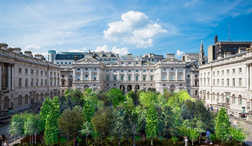 A Forest Of 400 Trees Has Sprung Up At Somerset House