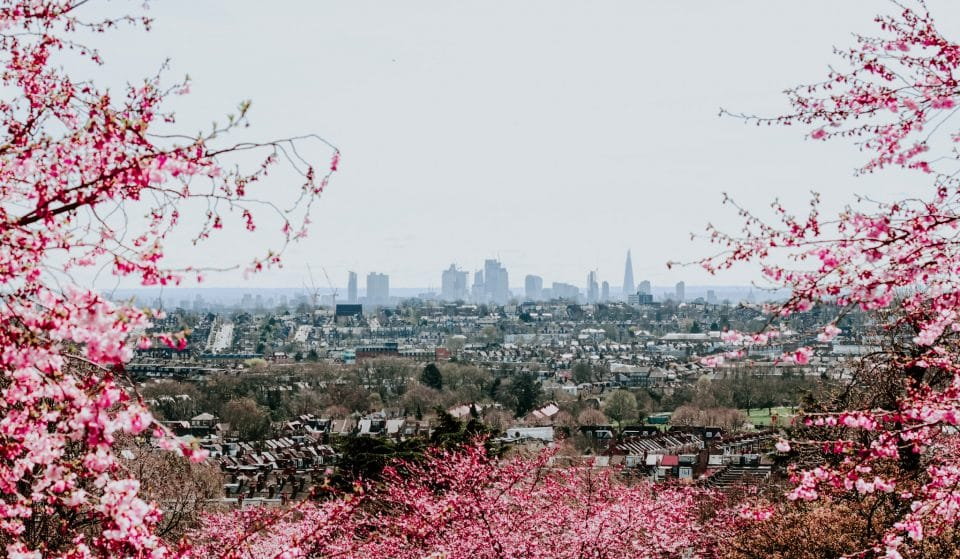 30 Of The Best Places In London To Spot Cherry Blossom