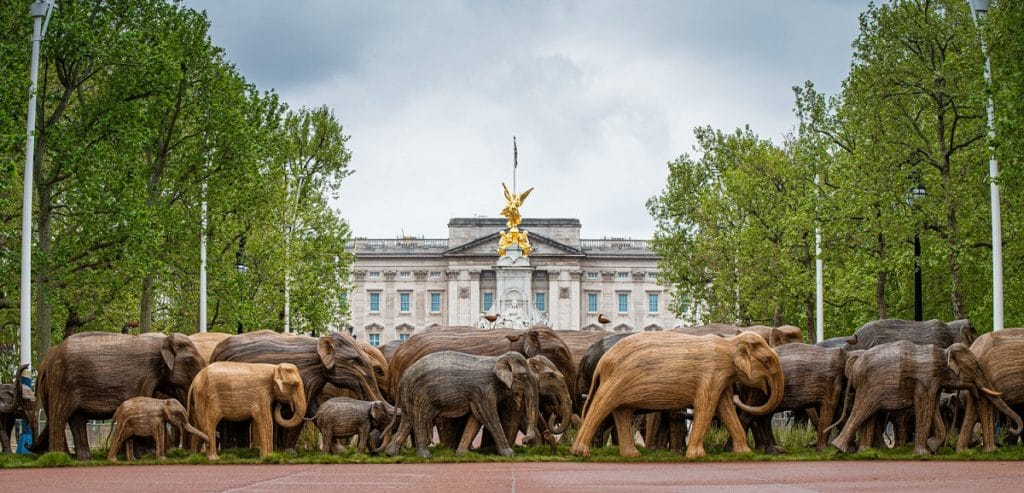 Elephant sculptures are popping up around London to remind us to live peacefully alongside wildlife