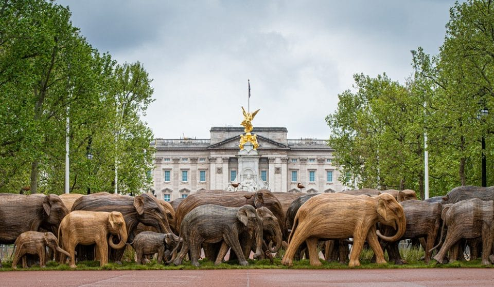 Herds Of Life-Sized Elephant Sculptures Are Popping Up Around London For A Good Cause