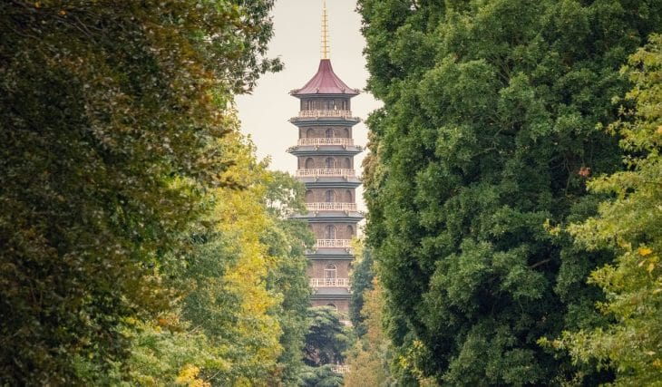 A Festival Dedicated To Japanese Nature, Art, And Culture Is Coming To Kew Gardens