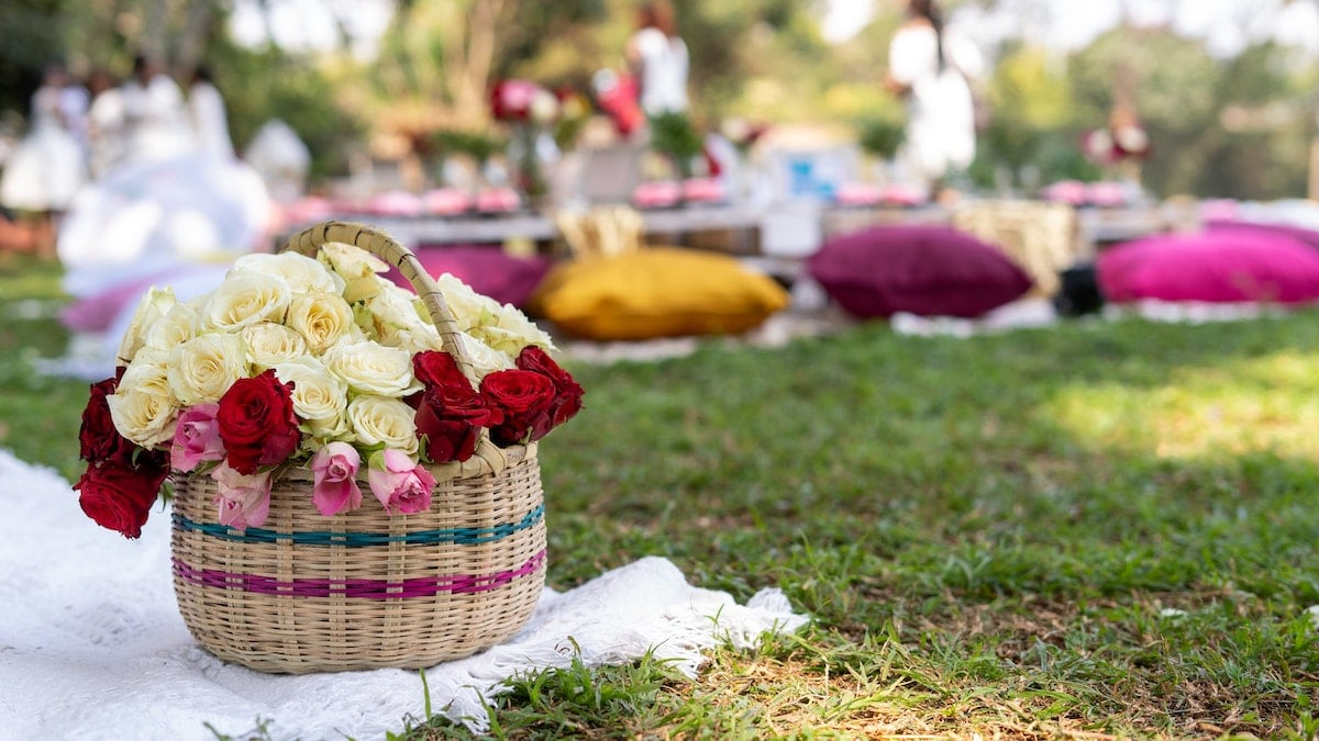 san miguel summer picnic