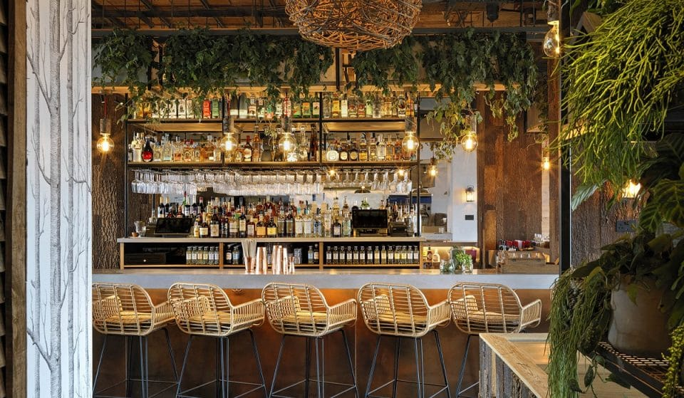 The Sky-High Mexican Restaurant With The Lush Treehouse Vibes • Madera