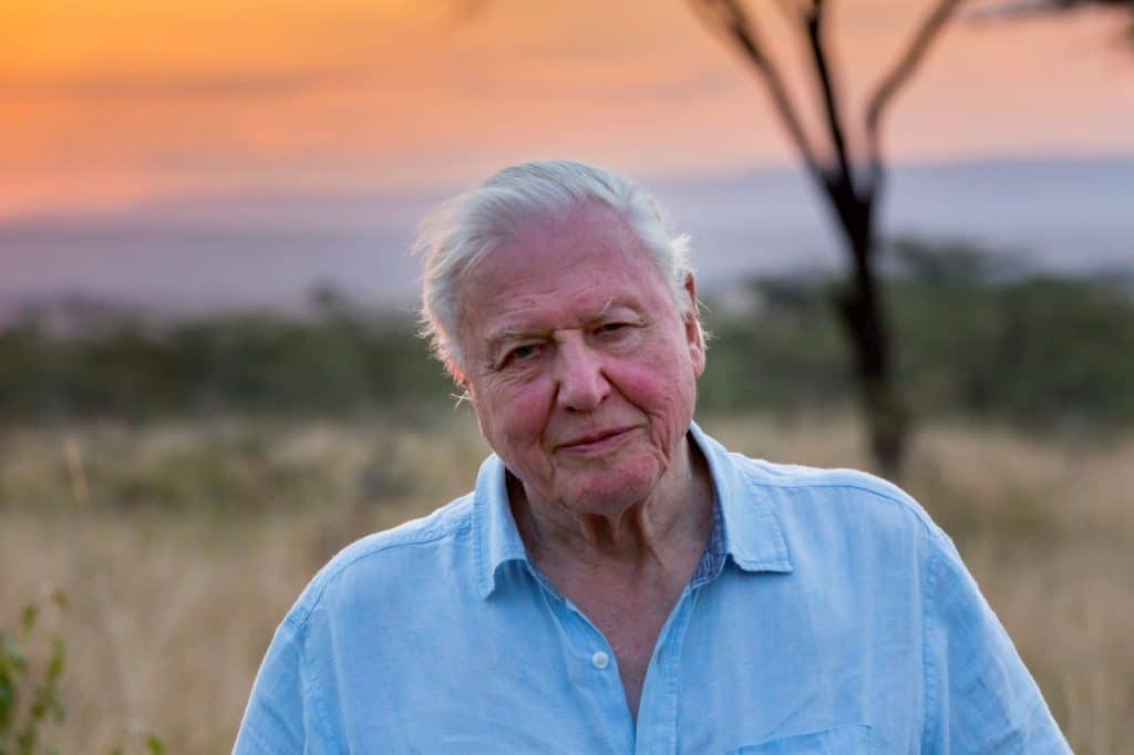 Netflix-documentaries-2020-david-attenborough