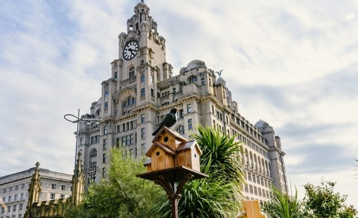 This New Public Art Campaign In Liverpool Features A Trail Of Magical Birdhouses