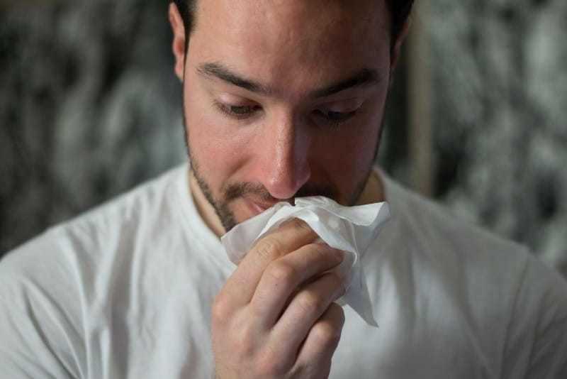 You Can Thank The Santa Ana Winds For Your Sneezing And Itchy Eyes