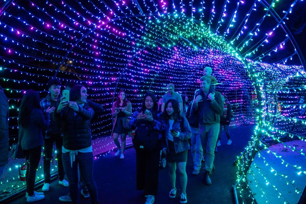 Explore A Wild Wonderland Of Lights At The L.A. Zoo!