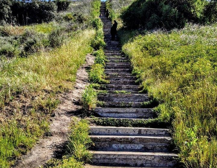 6 Hidden Stairwells To Climb With Scenic Views In L.A.