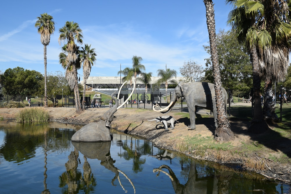You Can Vote On The Future Redesign Of The La Brea Tar Pits