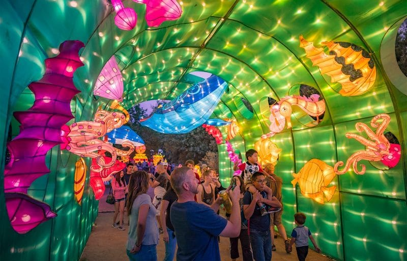 A Gorgeous Garden Of Chinese Lanterns Is Returning To L.A.'s Arboretum This Month