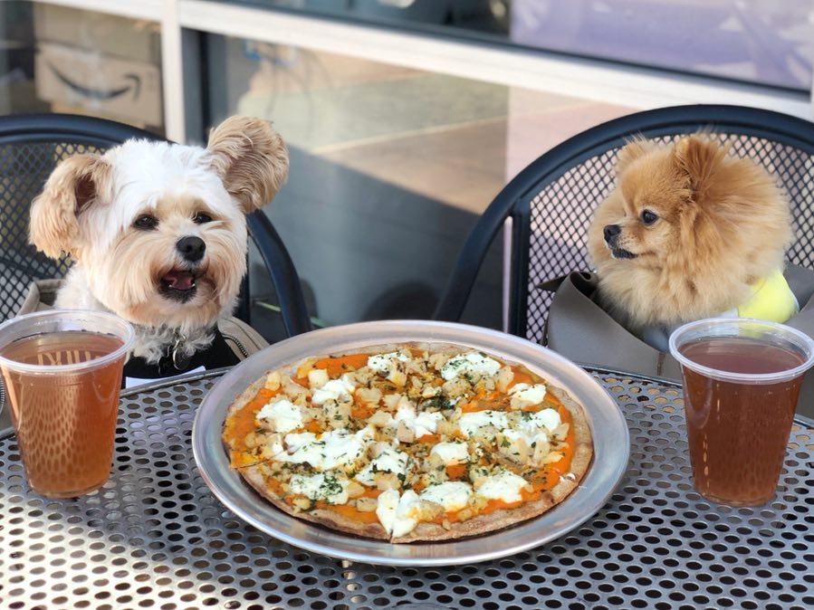 This Restaurant In Rosemead Makes Pizza For Dogs And It May Be The Cutest Thing Ever