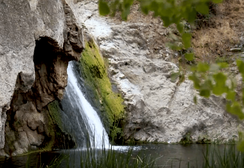 7 Hikes That Lead To A Hidden Los Angeles Oasis