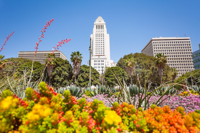 L.A. Is Giving Away Free Trees In Hopes To Bring Nearly 90,000 New Plants To The City