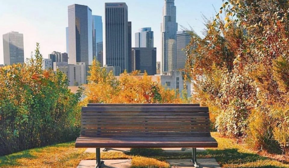 5 Los Angeles Parks That Offer Incredible Views