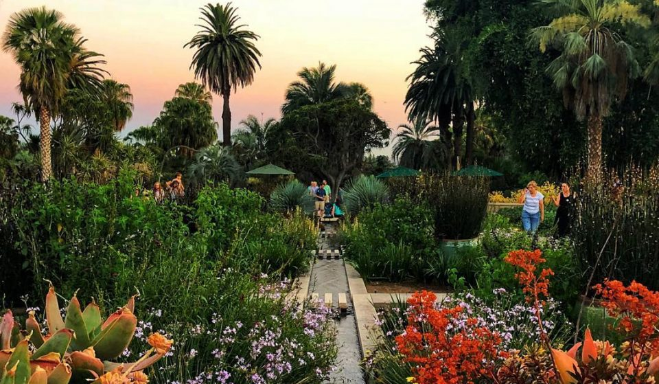 Gorgeous Botanical Gardens That Are Open Right Now