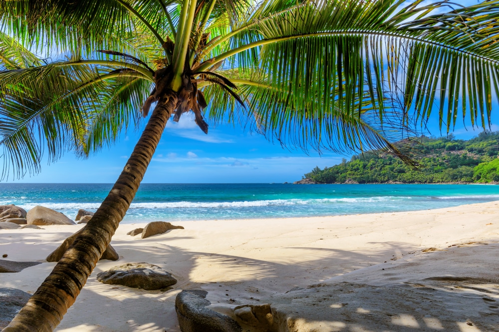 Barbados Will Let You Stay And Work Remotely From The Island For One Year