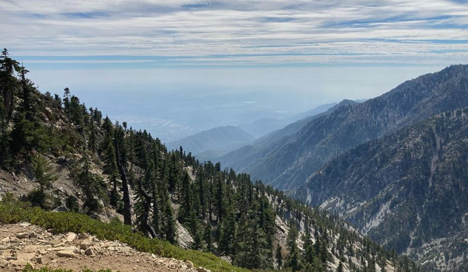 Hikers, Take Note: Parts Of San Bernardino National Forest Now Require A Permit