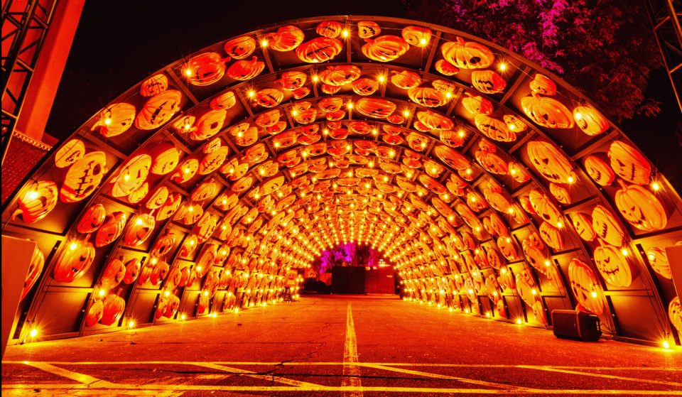 This Dazzling Jack-O-Lantern Tunnel And Halloween Wonderland Is Open!