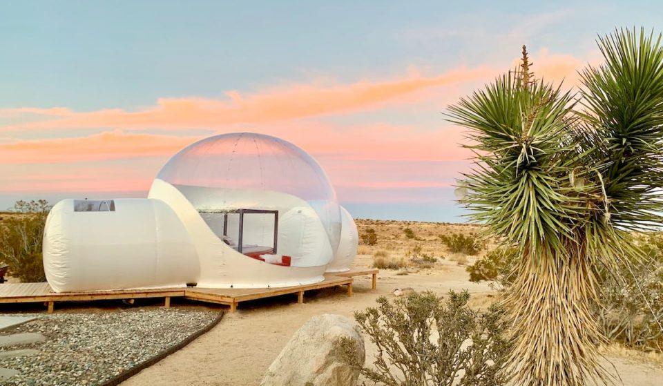 This Futuristic Joshua Tree 'Bubble House' Is The Perfect Escape For Stargazers