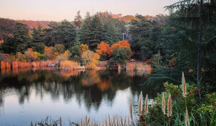 The Best Places To Catch A Glimpse Of Fall Around L.A.